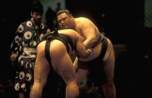 とにかくデカい日本の相撲取り、その生活習慣にびっくり! =中国