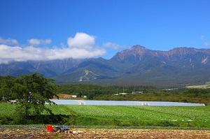 青い空と白い雲、緑の田んぼ・・・「これが日本の田舎なのか」と感動=中国メディア