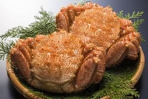 日本のグルメは、やっぱり日本で食べるのが一番うまい!=中国メディア