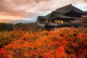 なぜだ! 日本を1度でも訪れた中国人は「なぜ再訪を望むのか」=中国メディア