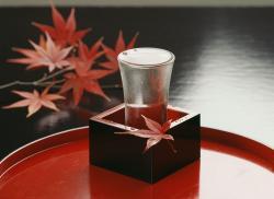 それって飲めるの? 日本人が木からお酒を造ろうとしている=中国メディア