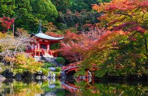 日本の秋は世界で最も美しい! 特に京都の「自然と文化の融合」が絶品=中国