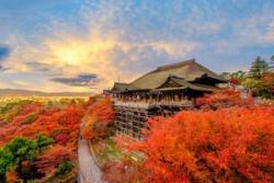 一生に一度しか日本に行けないなら、「自分は秋の京都を訪れる」=中国メディア