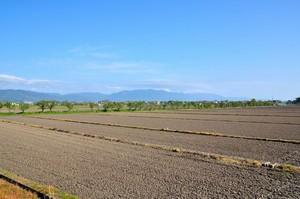 わが国が日本の農業に追い付くには「少なくともあと50年はかかる」=中国メディア