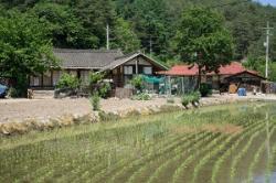 日本と韓国の農村を比較してみたら「非常に大きな差があった」=中国メディア