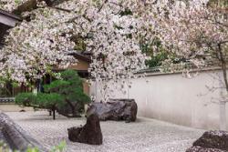 日本旅行について、外国人が誤解しがちなこと=中国メディア
