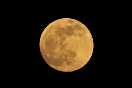 日本人も「お月見」をするのか!中国伝統文化の影響だ=中国報道