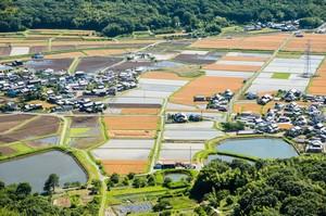 日本と中国の「差」を知りたいか? すべては「農村」にあり