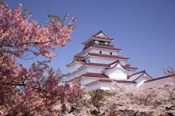 観光立国を目指す日本、それを強く後押ししているのは「中国人だった」=中国メディア