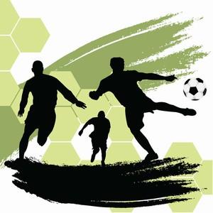 日本サッカーは「平成」という時代に飛躍的な成長を遂げた=中国報道