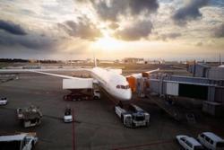 海外選手を迎える日本の空港の感染対策は、どのようになっているのか=中国メディア