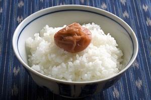 日本の食文化を担う「お弁当」、実は最高の「愛国フード」だった!=中国メディア