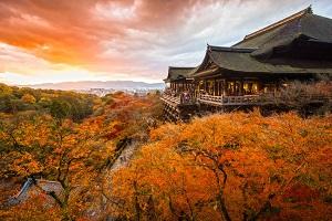 今や日本の観光産業を支える中国人観光客、彼らが日本を大好きな理由=中国メディア