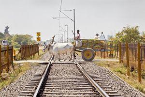 日本を選んでくれて「正直、良かったと思ってる」 インド高速鉄道に中国ネットの声は・・・