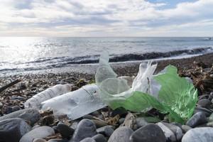 広東省の海岸で大量の廃棄物を当局も黙認 驚きの理由とは?=中国メディア