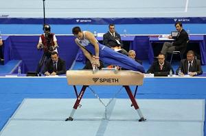 やっぱり中国製が「ボイコット」された! 東京五輪の体操用具、日独メーカー製で決定=中国メディア