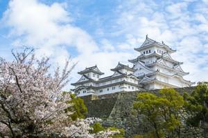 美しすぎる・・・もし日本で1カ所しか行けないなら「行くべきは姫路城だ」=中国