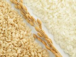 中国産食品の「悪名高さ」はイタリアでも、「プラスチック米を食べた」と主張する人も=中国メディア