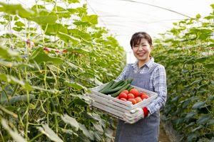 日本人が長生きなのは、環境保護型農業のおかげだった! =中国メディア