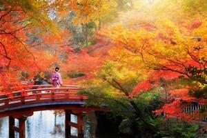 何度も訪れたいに決まってる! 「日本旅行が大好き」な中国人が多い理由