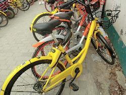 【コラム】中国のシェアリング自転車