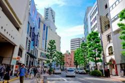 中国人が日本旅行に行きたがるのはなぜか、中国人旅行客の意見=中国メディア